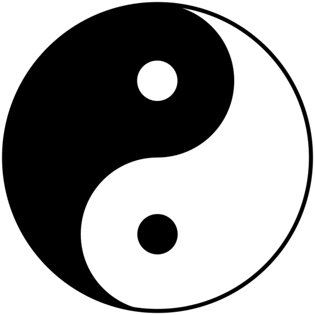 Excitation And Inhibition The Yin And Yang Of The Brain
