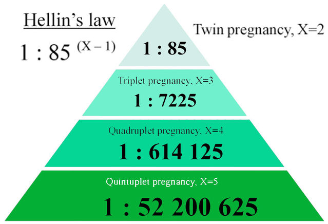Twins and More: Too Much of a Good Thing?   Psychology Today