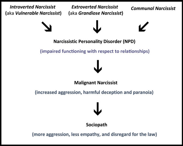 Where does narcissistic personality disorder come from