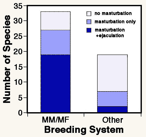 Masturbation frequency of american males