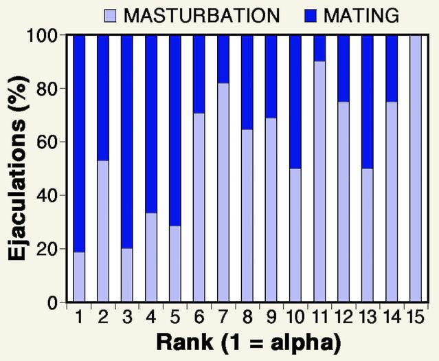 Moral issues on masturbation