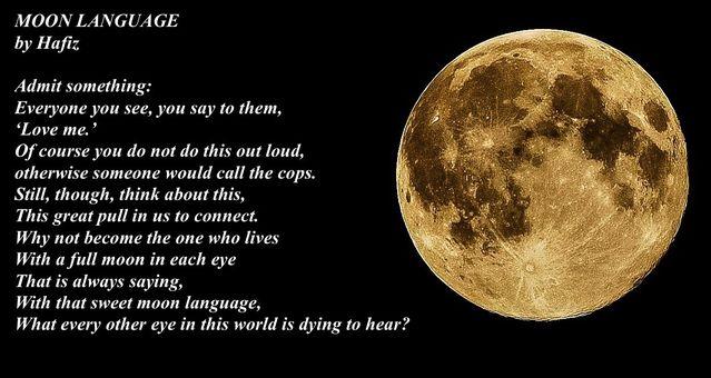 Image from Pixabay, words by Hafiz