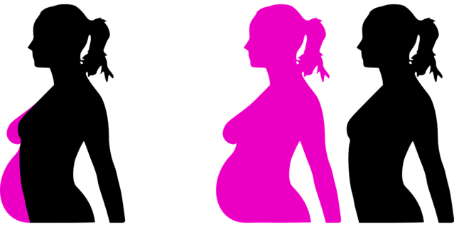 pregnancy-23889_1280 Pixabay clkr-free-vector-images