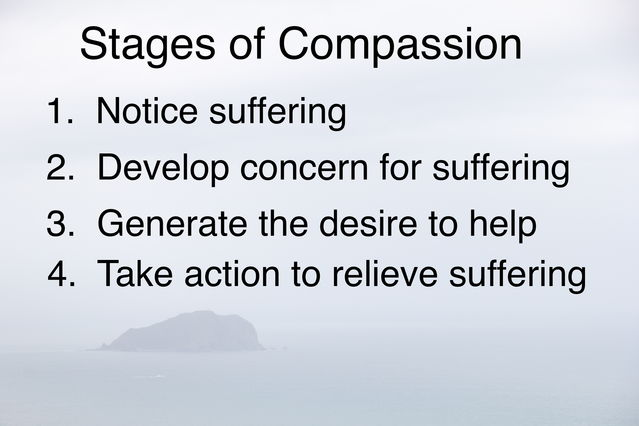 Image by Ravi Chandra, words adapted from Thubten Jinpa, The Fearless Heart
