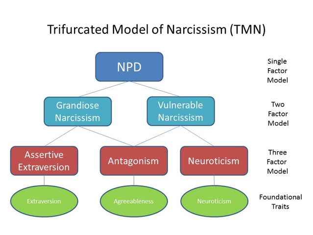 Trifurcated Model of Narcissism (TMN)/W. Keith Campbell & Josh Miller/ CC 4.0