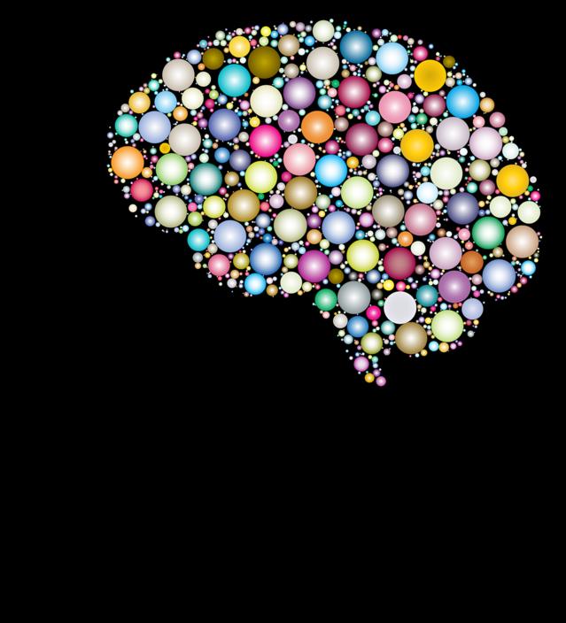cranium-3199408_1280 Pixabay GDJ