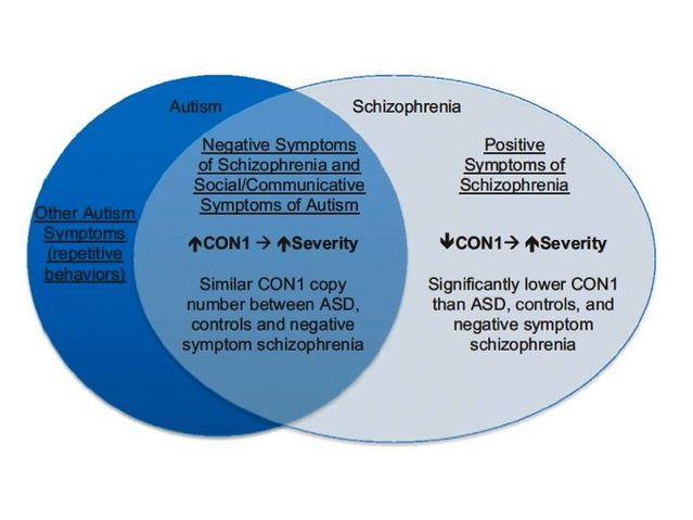 What is Autism Spectrum Disorder  CDC