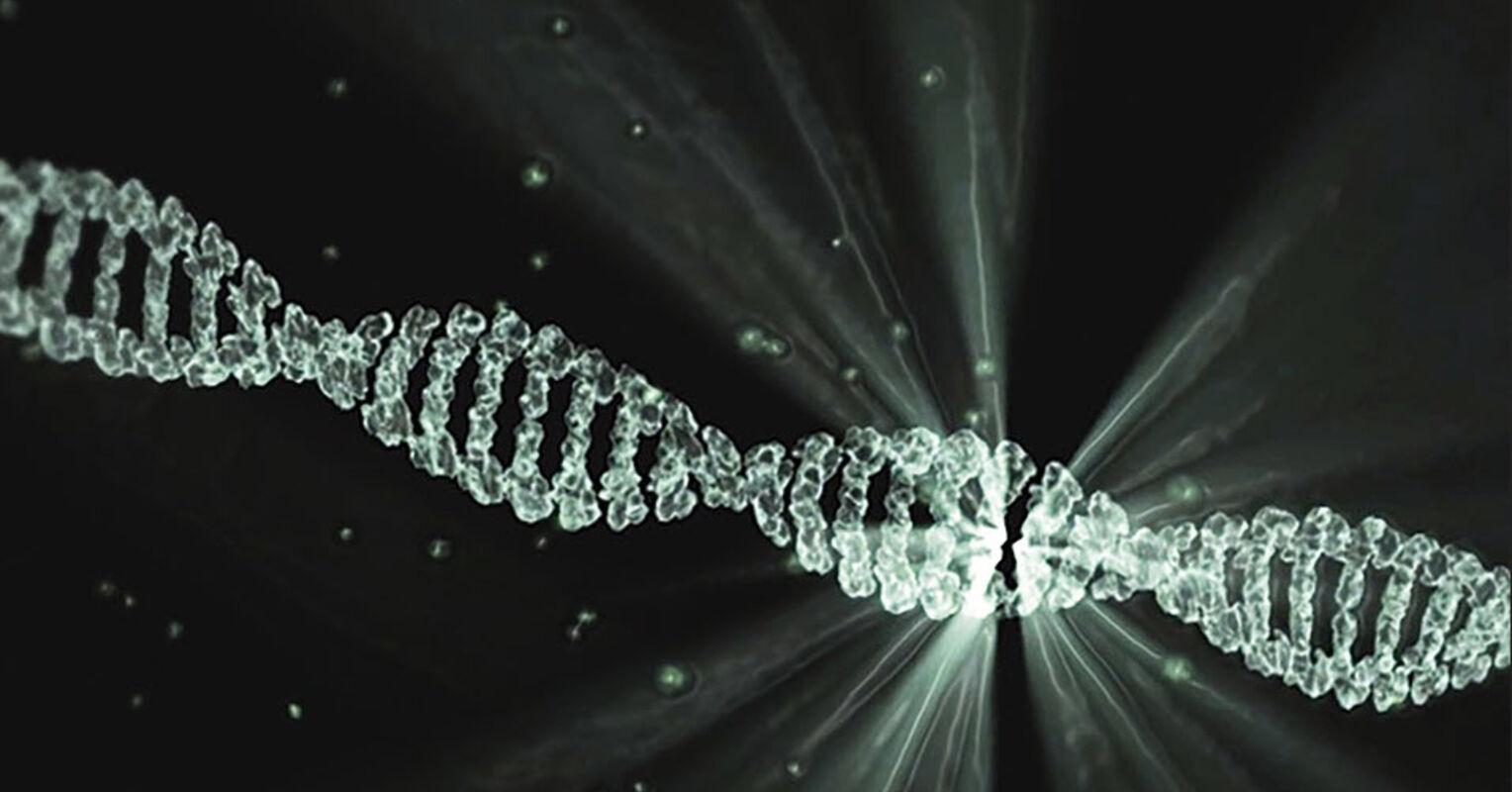 New AI Framework May Accelerate Novel Therapeutics