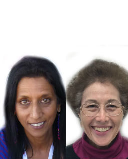 Shoba Sreenivasan, Ph.D., and Linda E. Weinberger, Ph.D.
