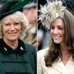 Stepmonster in the Spotlight: What Kate v. Camilla Can Teach Us Commoners