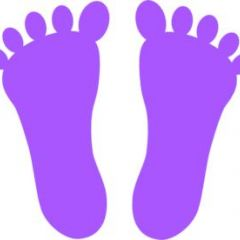 18. Calculate Your Life's Footprint