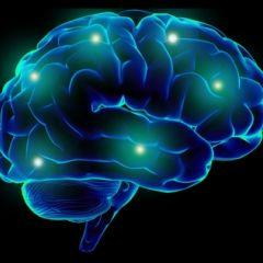 17. Ten Ways Your Brain Is Smacking You Around