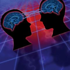 24. Mirror Neurons: The Most Hyped Concept in Neuroscience?