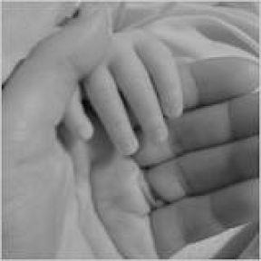 The Zen of Parenthood