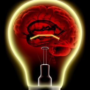What are the physiological costs in the cognitive economy?