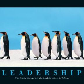 Role Models and Beliefs About Leadership
