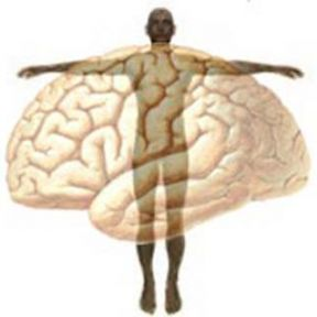 Mind-Body Beliefs Affect Health Behavior