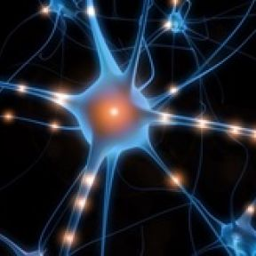 How Zaps to the Brain Can Improve Memory