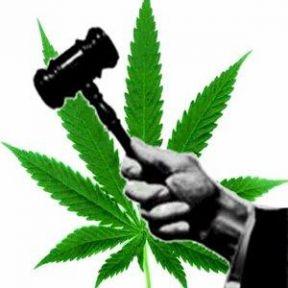 Legalize Marijuana?  Yes.