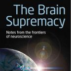 What Is the Brain Supremacy?