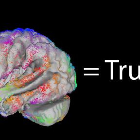 Fashionable Neuroscience