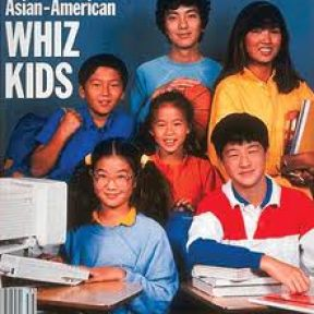 Seven Key Cultural Dimensions of the Model Minority Myth