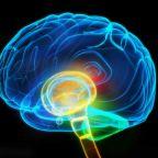 ADHD as a Brain Maturation Delay?