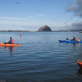 Lessons from Kayaking