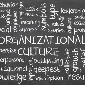 When Organizations Respond to Workplace Bullying