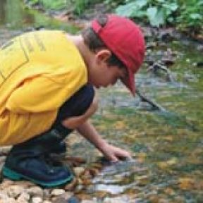 How Nature Can Transform Education