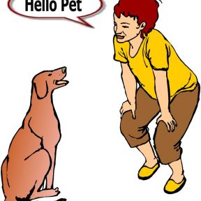 Is the Language We Are Using to Describe Our Pets Sending the Wrong Message?