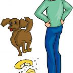 Does Punishing a Dog After a Transgression Really Work?