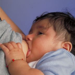 Food Preferences Develop In Utero and During Breastfeeding.