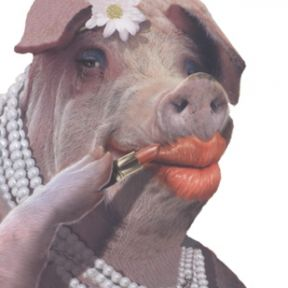 Dieting: Put Lipstick On A Pig And It's Not A Pig