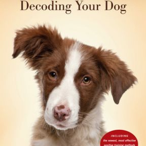 """Decoding Your Dog"": Honoring What Dogs Want and Need"