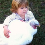 The Emotional Lives of Animals; Children and Animal Minds