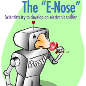 Does a Rose Smell Sweet? Ask an eNose.