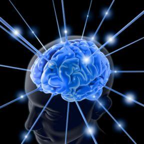 You Brain Works Like a Radio