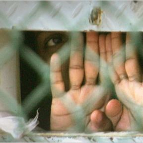 Psychologists and Torture: Video and Petition