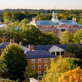 Job Seeking? Take Advantage of University Websites