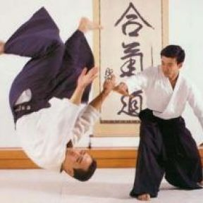 Mind Body Meltdown—Aikido Test Nerves