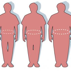 So Many Brain Cells, So Many Ways to Control Body Weight