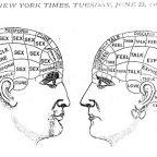 Male Brain, Female Brain