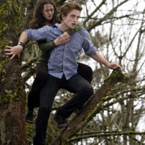 The Meaning of Life, According to Twilight, Is Love, Only Love