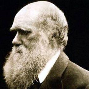 Darwin's Regret