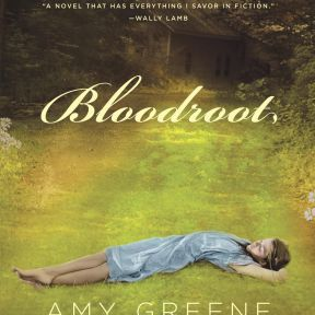 Interview with Author Amy Greene