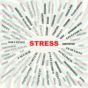 Managing Everyday Stressors Is Key to Health and Longevity