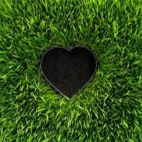 Are You And Your Significant Other Green Compatible?