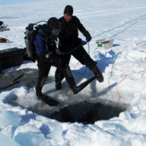 Surviving Fear under the Ice