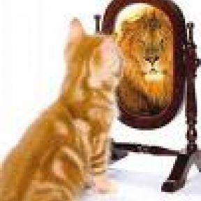 The Foundation of Self-Esteem